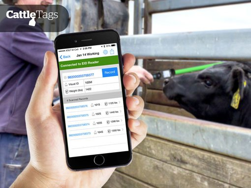 Banner | Mobile app developed by LeewayHertz for CattleSoft allowing cattle owners to track cattle using RFID readers
