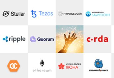 Blockchain Platforms used by Top Blockchain Companies