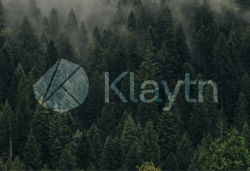 Klaytn: A Service Centric Hybrid Platform