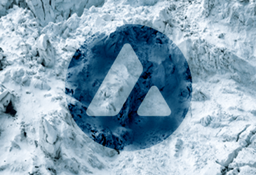 A Detailed Guide On Avalanche Network